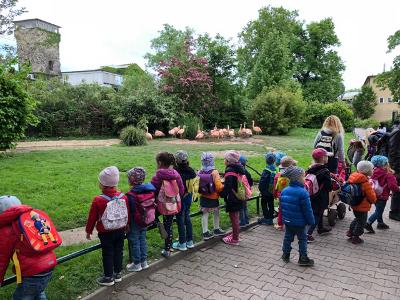 Zoo-Besuch der Nezabudka 5-Kinder
